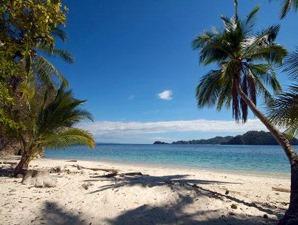 Palmen am Strand von Manuel Antonio