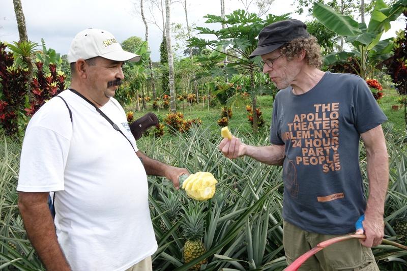 Ein Mann isst eine Ananas