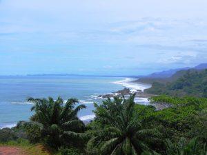 Küste mit Palmen im Süden Costa RIcas