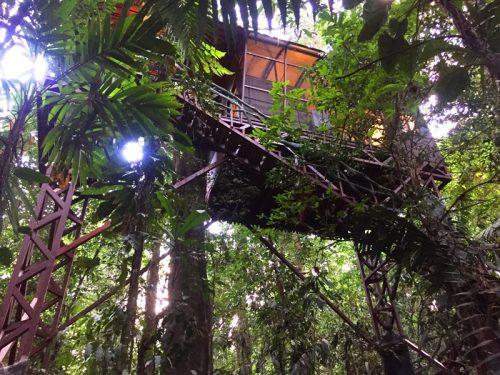 Abenteuer hoch oben im Baumhaus.