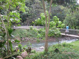 Bribri Costa Rica: Landschaft bei den Bribris in Yorkin