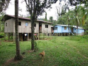 Bribri Costa Rica: Hütte bei den Bribris in Yorkin