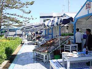 Marokko Rundreise - Fischstände in Essaouira