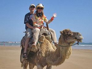 marokko-essaouira-kamel-ausritt