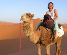 Karawane zu den Wüstendünen