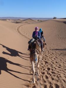 auf dem Kamel in die Wüste