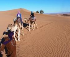 Die Sahara beginnt hier