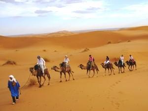 Familienreise Marokko mit Kindern Kameltour