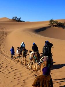 Karawane zum Wüstencamp