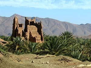 sahara-draatal-marokko-palmenoase