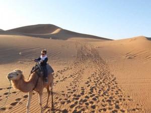 kind-kamel-wueste