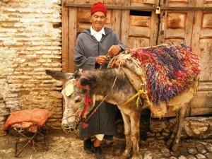 mann-esel-marokko