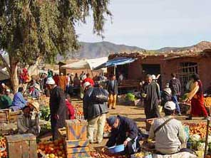 wandern-in-Marokko-Markt-von-Asni