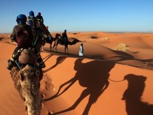 Kamelausritt in der Sahara