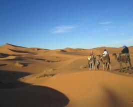 Kleine Kamelkarawane von Touristen in der weiten Wüste