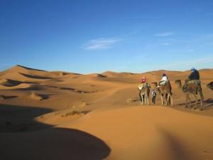 Kamelritt durch Sanddünen in Marokko