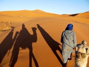 Marokko Rundreise individuell - Kamelschatten