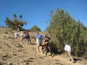 wandern-in-Marokko-mit-Esel-und-Guide