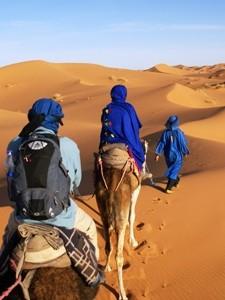 Kamelritt zum Zeltlager