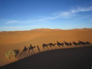 karawane-marokko