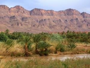 draa-tal-eine-woche-marokko