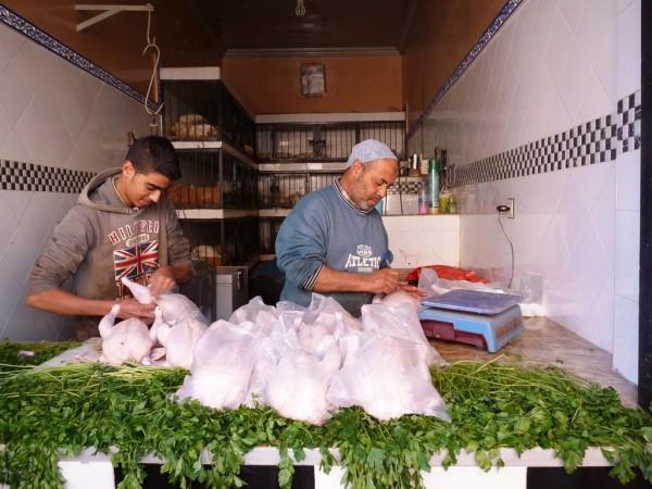 metzger-huehnchen-marrakesch