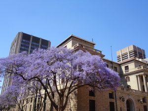 Pretoria Stadtzentrum