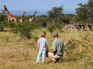 Ranger mit Reisendem beim Beobachten der Giraffen