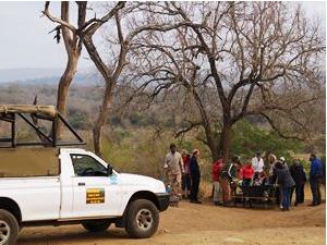 Fährtensuche bei der Safari in Hluhluwe