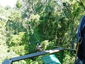 Kapstadt bis Port Elizabeth: Plattform bei der Canopy Tour im Tsitsikamma Nationalpark