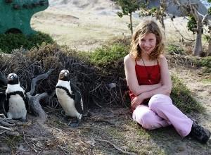Pinguine und Reisende am Boulders Beach