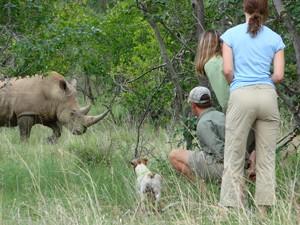 Ranger mit Kind im Auto auf Safari