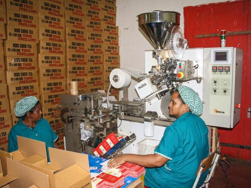 Teefabrik Mauritius