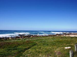 Küste von St. Francis Bay