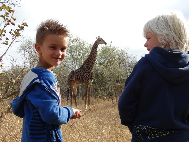 Kinder und Giraffe