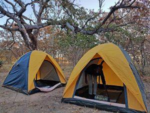 Südafrika Rundreise Walking Safari