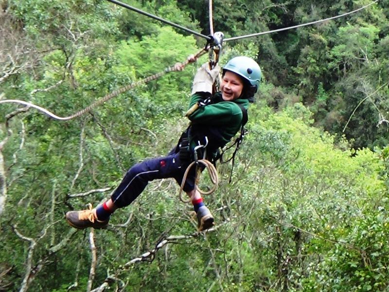 Caopy im Tsitsikamma Nationalpark