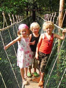 Kinder auf einer Hängebrücke im Taman Negara Nationalpark