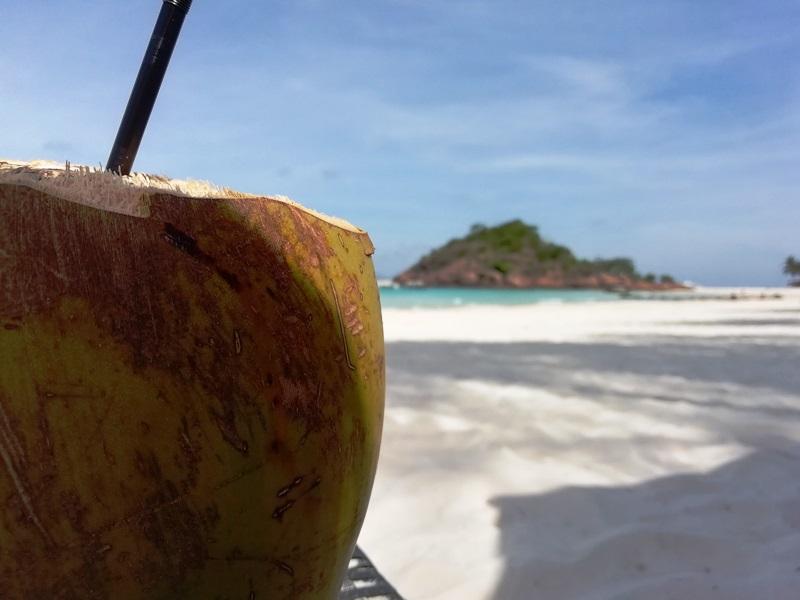 Kokosnuss am Strand von Redang