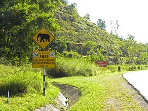 Achtung Elefanten Schild in Malaysia