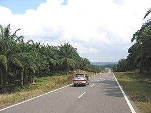 Mietwagenreise durch Malaysia