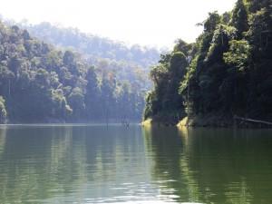 Über den Fluss geht es in den Dschungel.