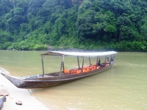 Boot im Dschungel