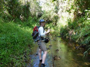 Batang Ai Dschungelwanderung