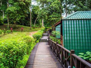 Tabin Wildlife Reserve Lodge