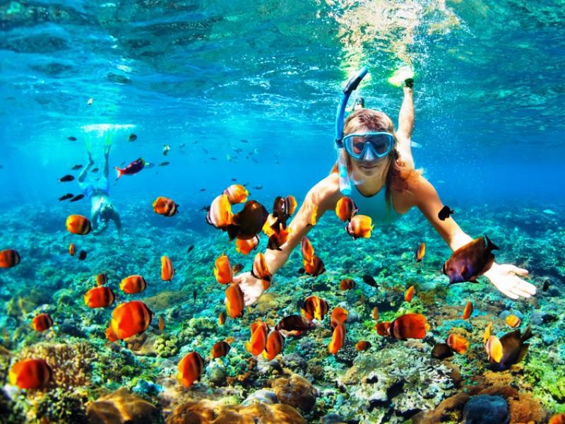 Unterwasserwelt Malaysias entdecken