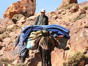 Mann und Gepäck auf Esel im Gebirge