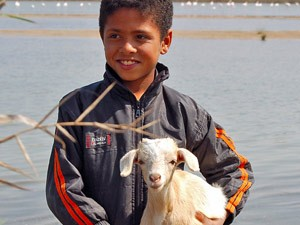 Marokkanischer Junge mit Ziege auf dem Arm