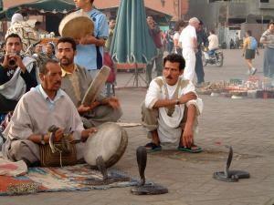 Marokko Rundreise: Schlangenbeschwörer am Djemma el Fna Platz