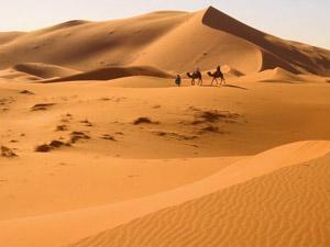 Ausblick über die Weite der Sahara